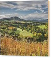 Eildon Hills In Autumn Wood Print