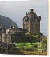 Eilean Donan At Kyle Of Lochalsh Wood Print