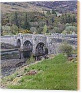Eilean Donan Castle - 8 Wood Print
