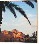 Ein Gedi Oasis Israel Wood Print