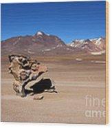 El Arbol De Piedra Bolivia Wood Print