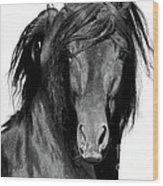 El Caballo Negro Wood Print