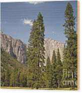 El Capitan And Yosemite Valley Wood Print