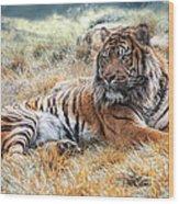 El Tigre Wood Print
