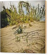 Elafonisi Grass Wood Print