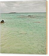 Elafonisi Sea View Wood Print
