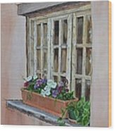 Elayne Look Through The Window Wood Print