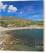 Elba Island - Beach In Seccheto  Wood Print