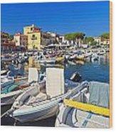 Elba Island - Marina Di Campo Wood Print