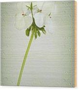 Eleanor Wood Print