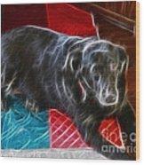Electrostatic Dog And Blanket Wood Print