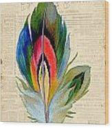 Elegant Feather-b Wood Print