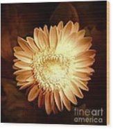 Elegant Flower Wood Print