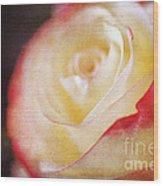 Elegant Rose Wood Print