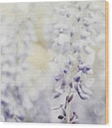 Elegant Wisteria Wood Print