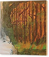 Elemences Wood Print