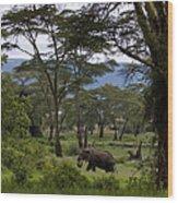 Elephant   #0068 Wood Print