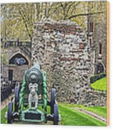 Elephant And Cannon Of The Tower Wood Print