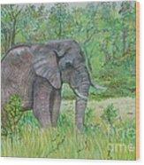 Elephant At Kruger Wood Print