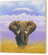 Elephant At Table Mountain Wood Print