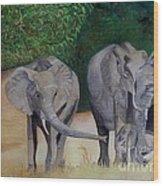 Elephant Family Gathering Wood Print