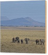 Elephant Family With Landscape Wood Print