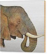 Elephant Head Study Wood Print
