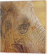 Elephant Wood Print