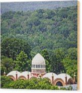 Elephant House At Cincinnati Zoo And Botanical Garden Wood Print by Paul Velgos