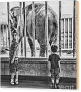 Elephant I Wood Print