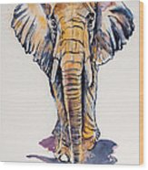 Elephant In Gold Wood Print