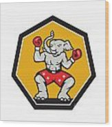 Elephant Mascot Boxer Cartoon Wood Print by Aloysius Patrimonio