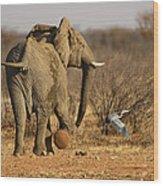 Elephant On The Run Wood Print
