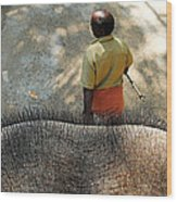 Elephant Ride Wood Print