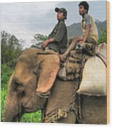 Elephant Rides Wood Print