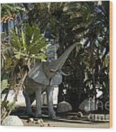 Elephant Show In Marbella Wood Print