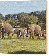 Elephant Train  Wood Print