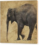 Elephant Walk II Wood Print