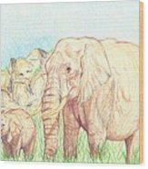Elephants Wood Print