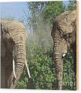 Elephants In The Sand Wood Print