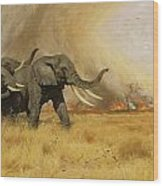 Elephants Moving Before A Fire Wood Print