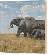 Elephants On The Move Wood Print