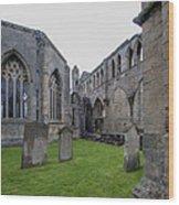 Elgin Cathedral Community - 6 Wood Print