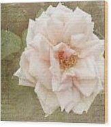 Elie Beauvillain Rose Textured Art Wood Print