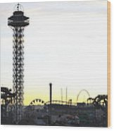 Elitch Gardens Night 2 Wood Print