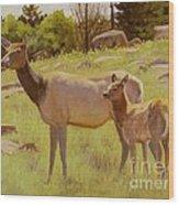 Elk And Calf Wood Print