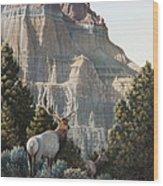 Elk At Cathedral Rock Wood Print