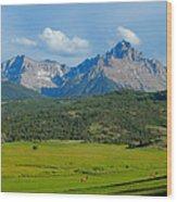Elk Below Mount Sneffels Wood Print