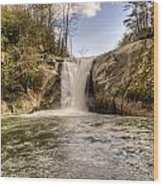 Elk Creek Falls 31 Wood Print