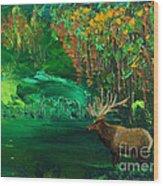 Elk Fall Wood Print
